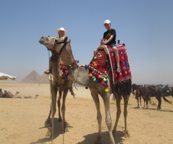 Camels Ride. Giza. Egypt.
